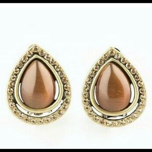 Paparazzi Clip On Earrings